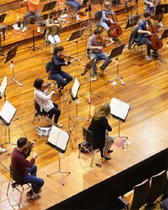 > String orchestra or ensemble up to 20 or 50 players